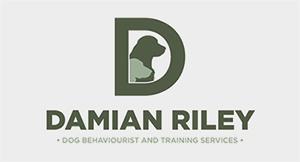 DamianRiley Logo
